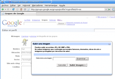 Captura de pantalla de Iceweasel