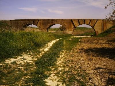 Puente de la Vía sobre el arroyo del Judío (Fotografía cortesía de Urbanismo en Valencina)