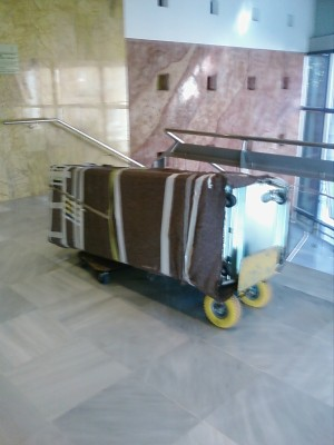 Cabina tumbada sobre carretilla (2)