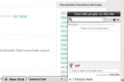 Aspecto general del chat integrado